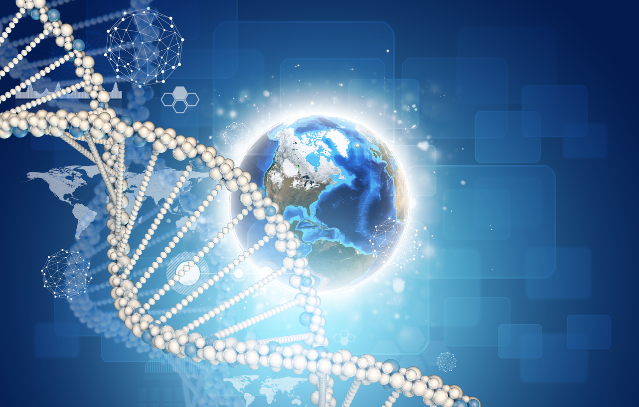 Our Seemingly Infinite DNA